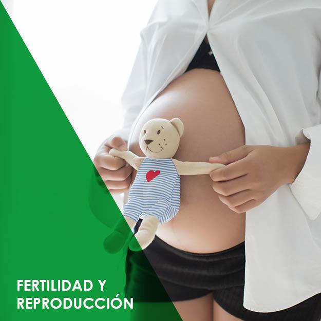 fertilidad y reproduccion en villaviciosa de odon