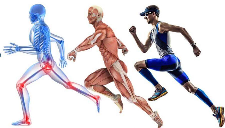 medicina deportiva villaviciosa de odon - clinica ilion - reconocimiento médico deportivo reebok health club