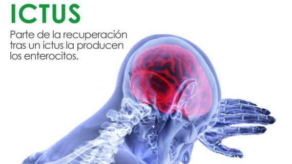 ictus, prevencion ictus, que hacer tras un ictus, como diagnosticar un ictus. madrid, villaviciosa, mostoles, alcorcon